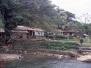 bukit_lawang
