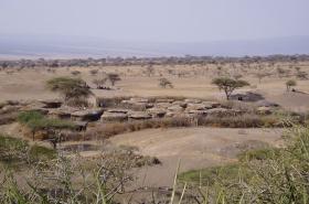 Africa1 046