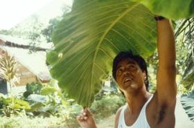 1990-7_indonesie-(378)