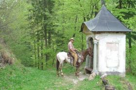 2005 Slovenië (1016)
