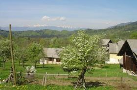 2005 Slovenië (964)