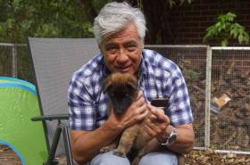 Puppies-01-09-2019-7-weken-44