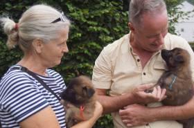 Puppies-17-08-2019-5-weken-14