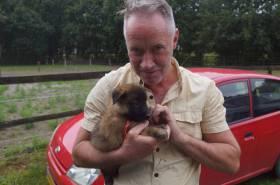 Puppies-17-08-2019-5-weken-23